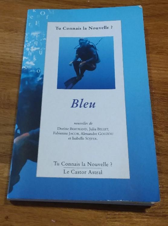 concours nouvelles 2008 tu connais la nouvelle Marie bochet roy noelie